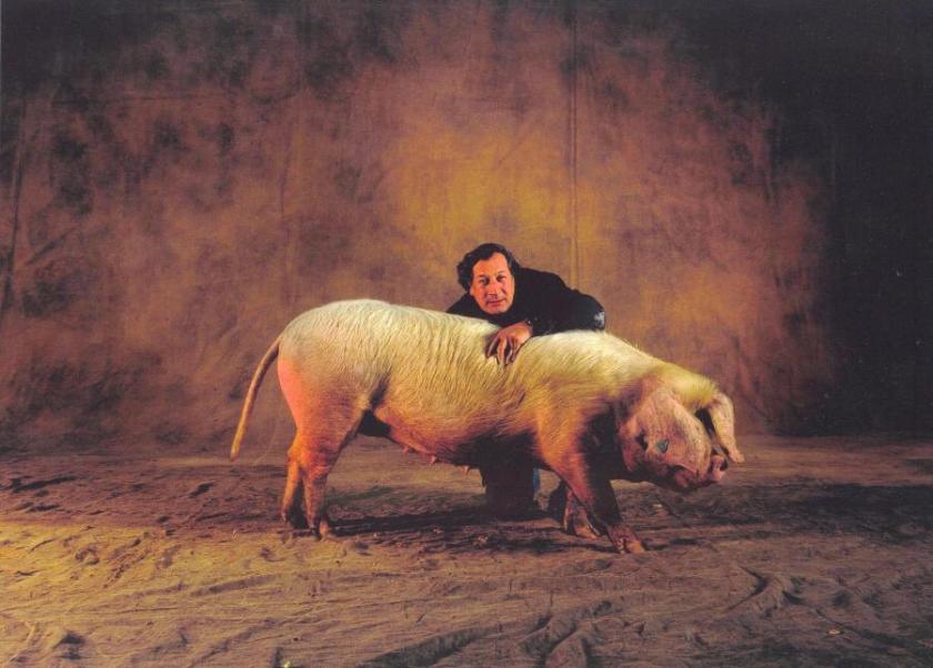 Cochon-yann-hartus-bertrand-au-salon-de-lagriculture